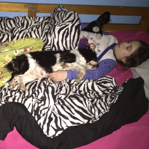 callie-and-gigi-sleeping